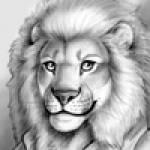 PeterCat Profile Picture